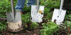 jardineria-huerto-paso-a-paso