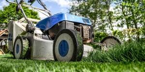jardineria-tareas-de-mayo