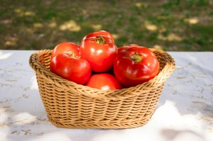 jardineria-tomates