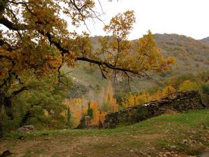 Valle de Ambroz 2