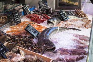 fish-shop-1111293