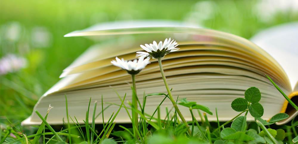 Los Libros Que Tienes Que Leer En Mayo Revista Urban Style