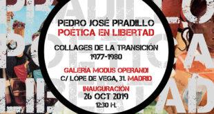 exposición Pedro José Pradillo Poética en Libertad
